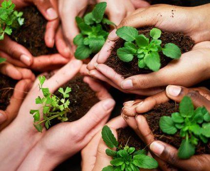 Простые эко-привычки + идеи и фишечки eco-friendly lifestyle