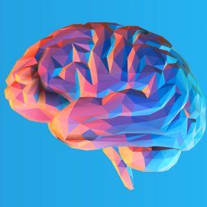 Как развить память: тренировки и упражнения для улучшения работы мозга